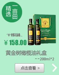 黄金树橄榄油礼盒